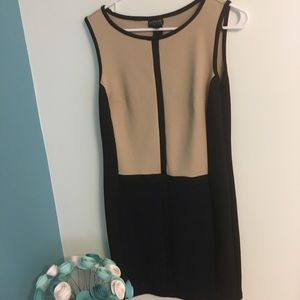 Enfocus Studio color block dress size 8